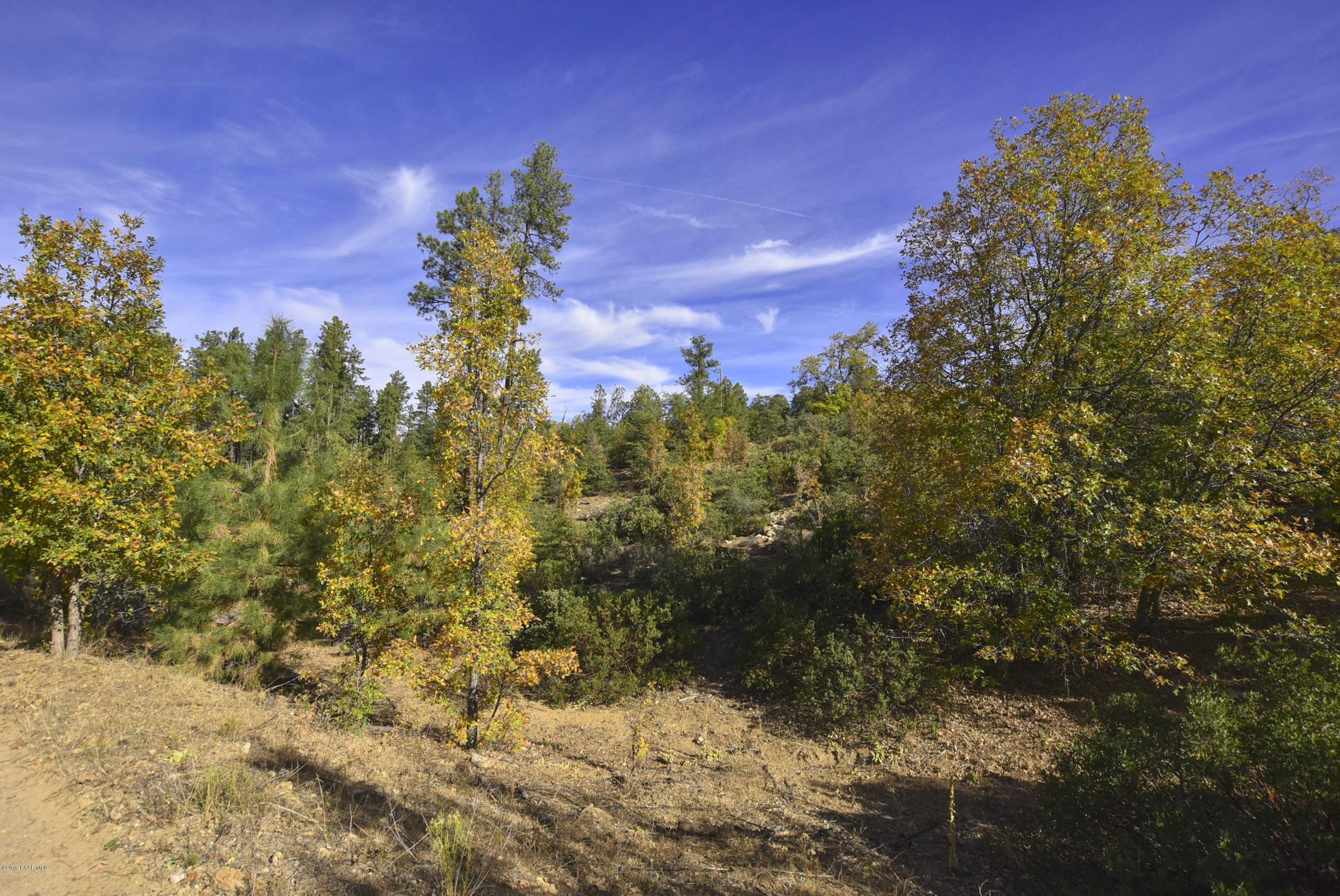 One of Prescott Homes for Sale at 3190 B W Tree Tops Trail