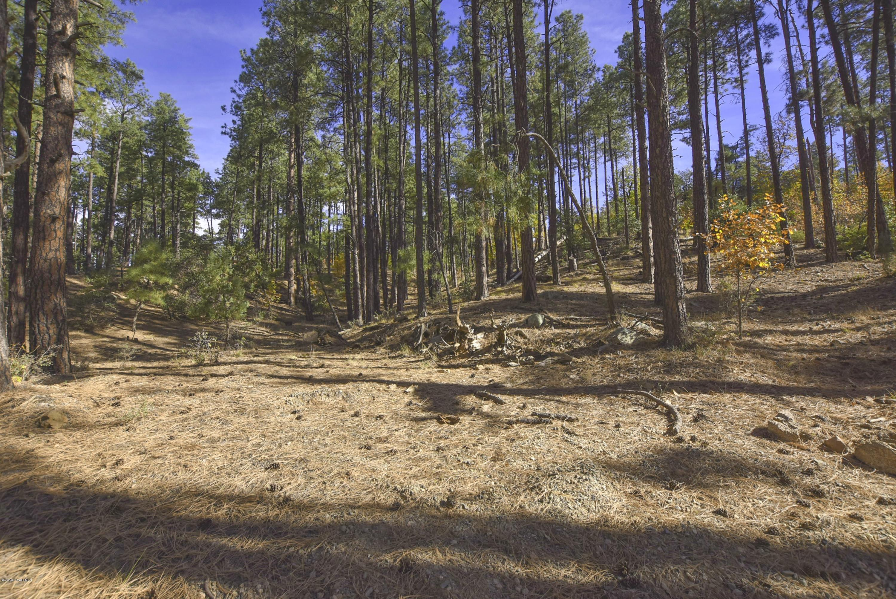 One of Prescott Homes for Sale at 3190 D W Tree Tops Trail