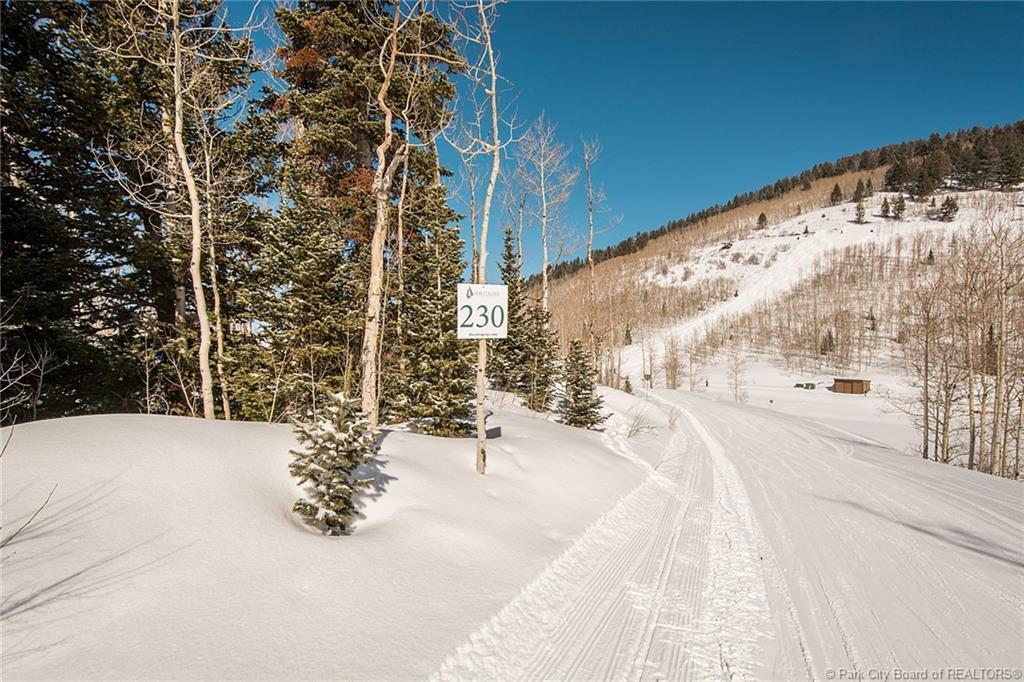 230  White Pine Canyon Road