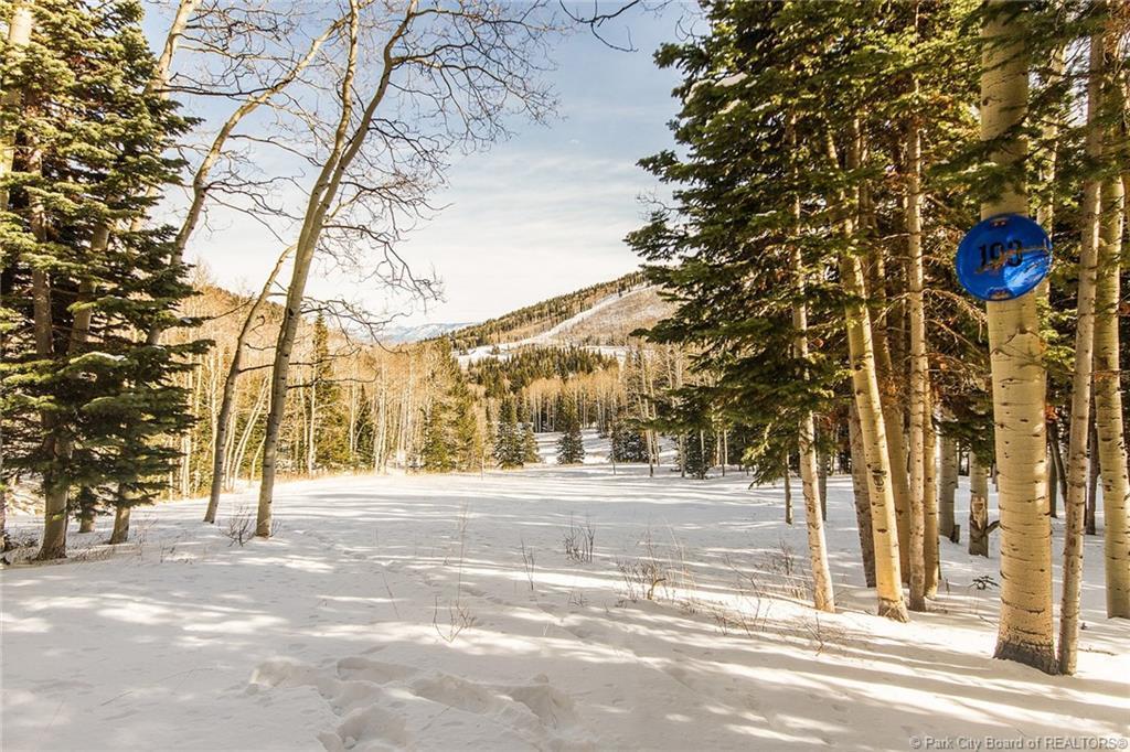193  White Pine Canyon Road