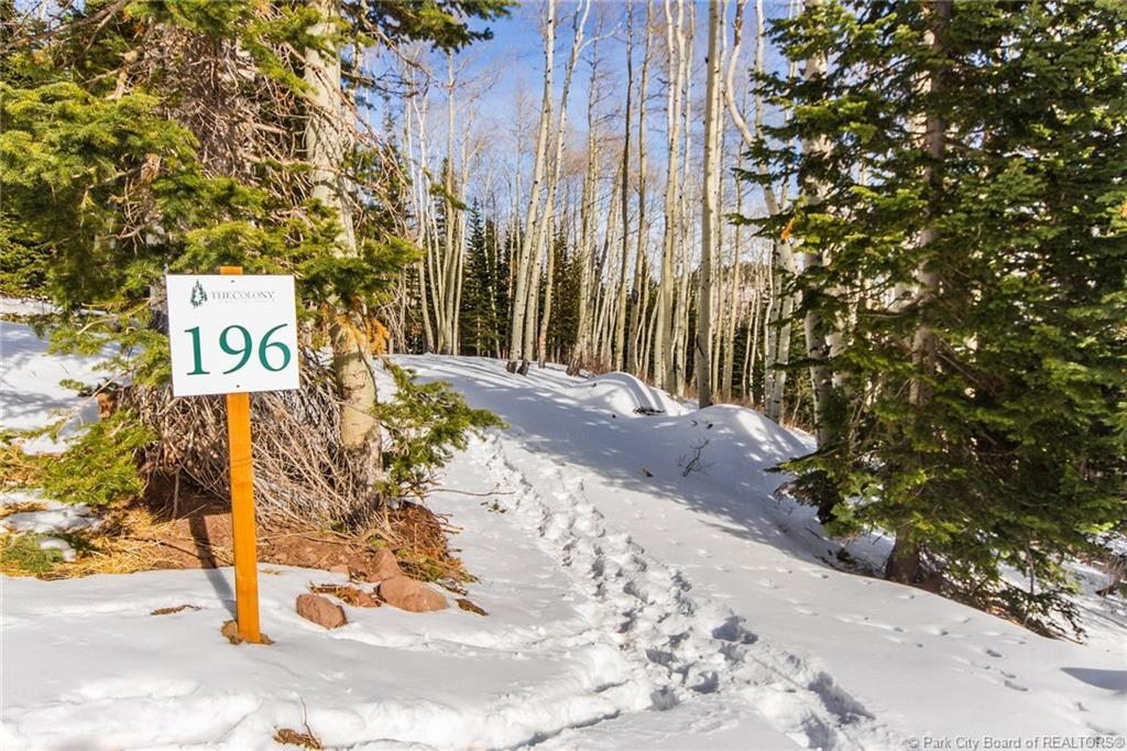 196  White Pine Canyon Road