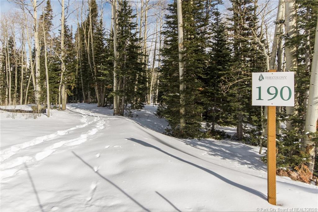 190  White Pine Canyon Road