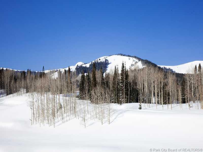 248  White Pine Canyon Road