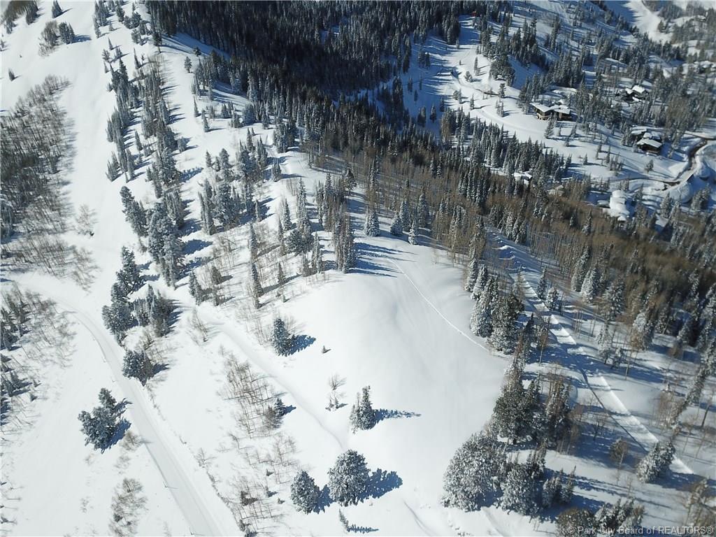 146A  White Pine Canyon Road