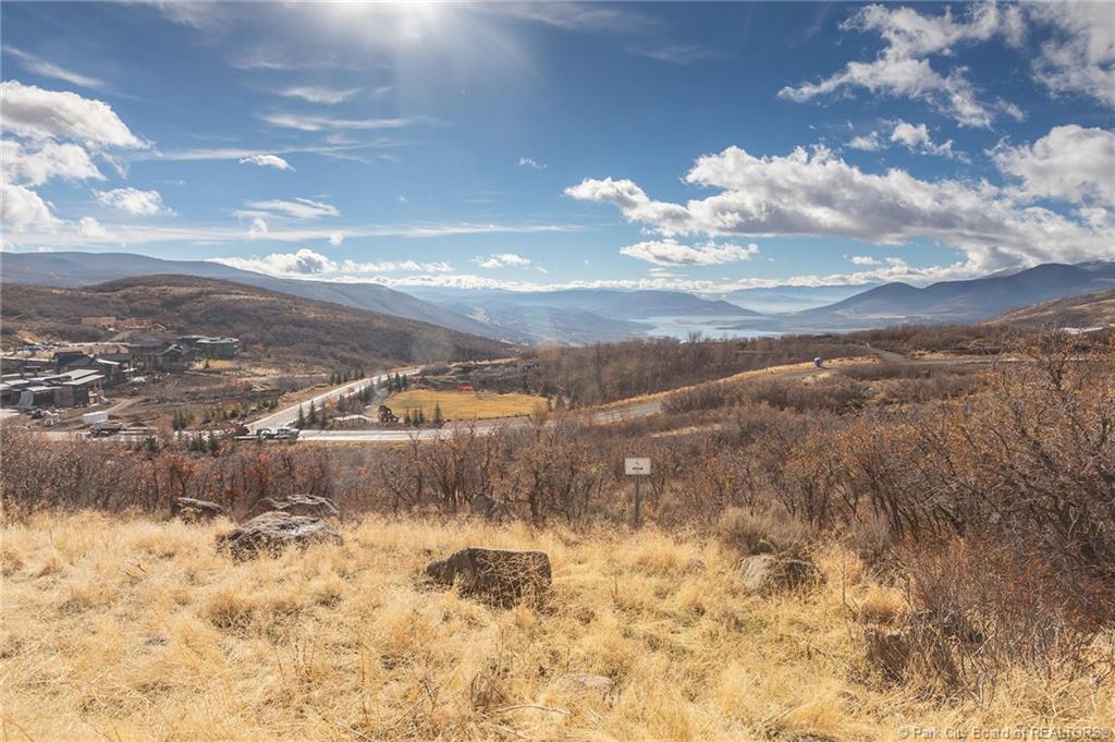 303 W Peace Tree Trail