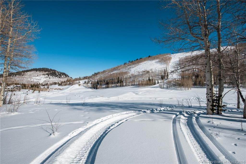 303  White Pine Canyon Road
