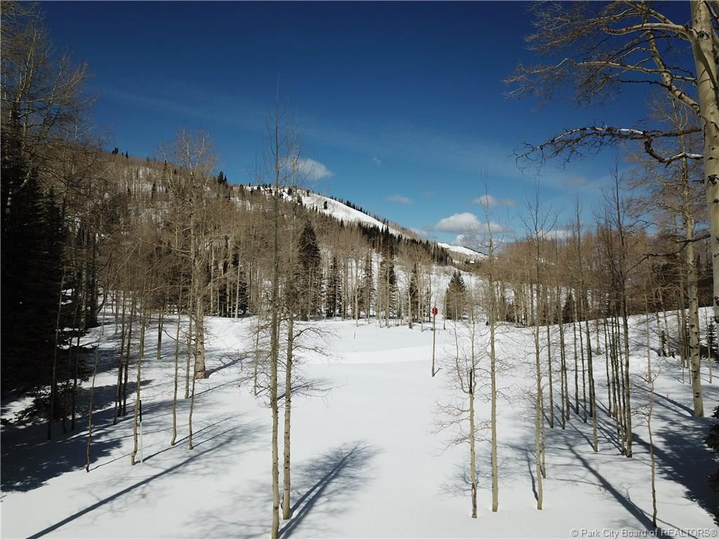 267  White Pine Canyon Road
