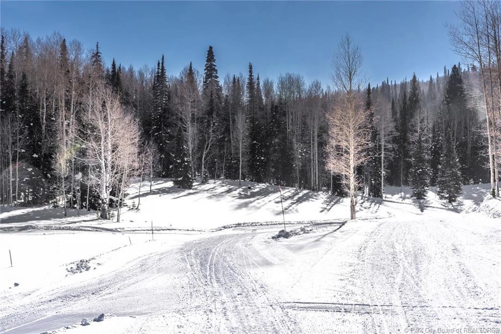 306  White Pine Canyon Road