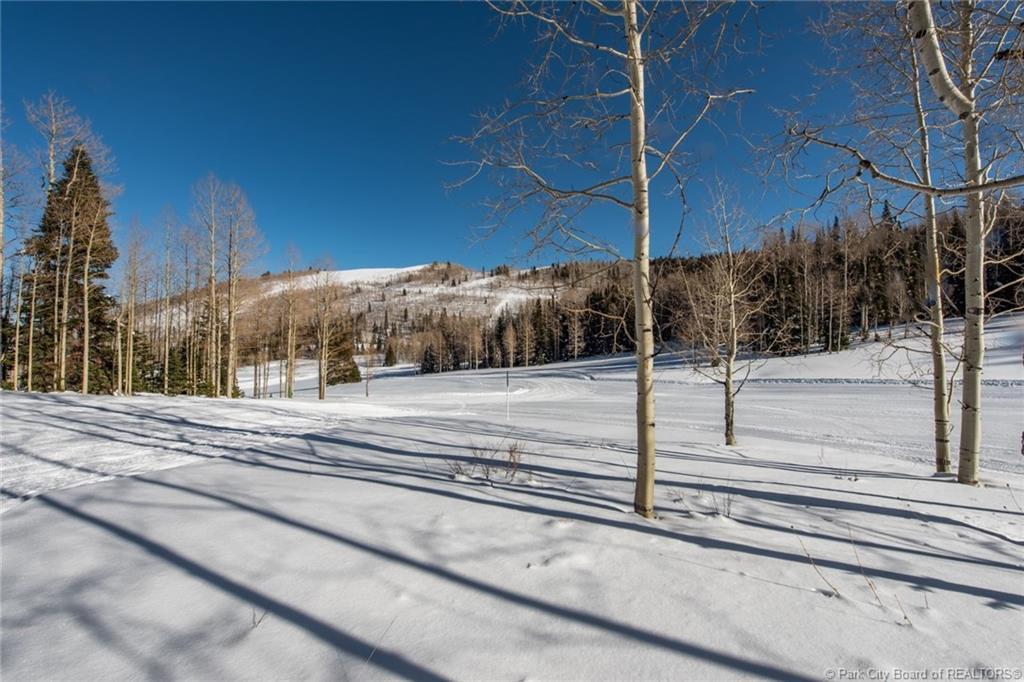 307  White Pine Canyon Road