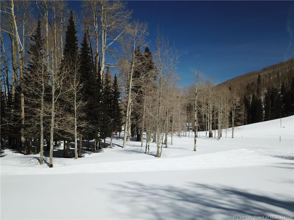 268  White Pine Canyon Road