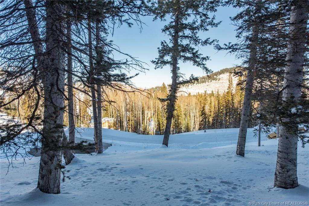 301  White Pine Canyon Road
