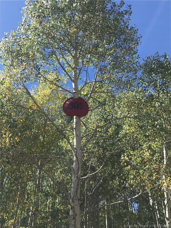 304  White Pine Canyon Road