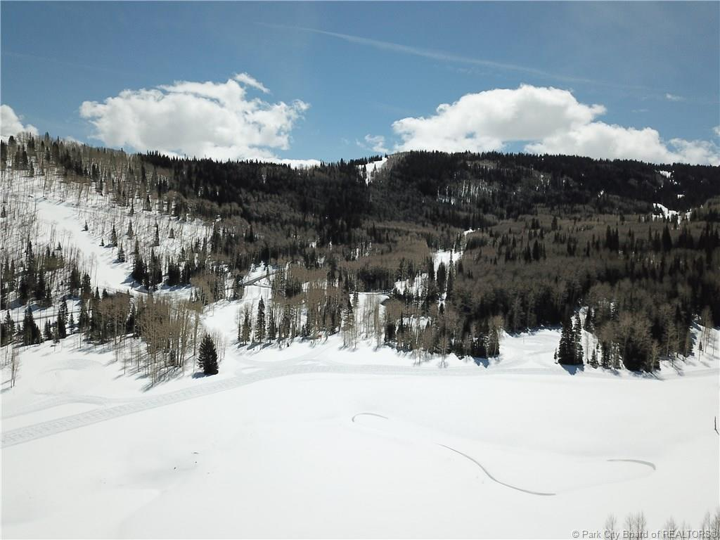 269  White Pine Canyon Road