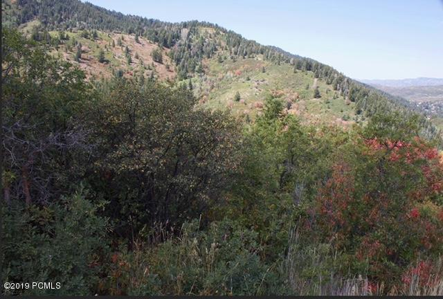 7144  Canyon Drive