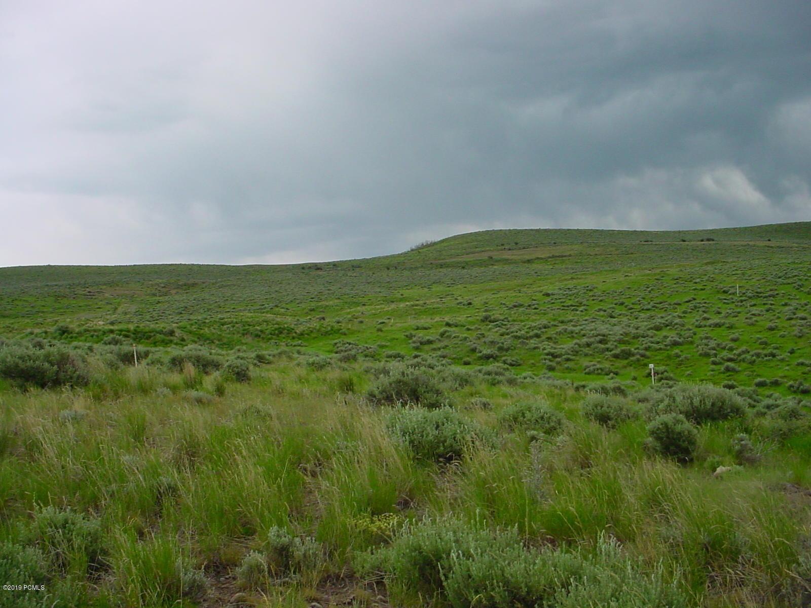 6836  Cody Trail
