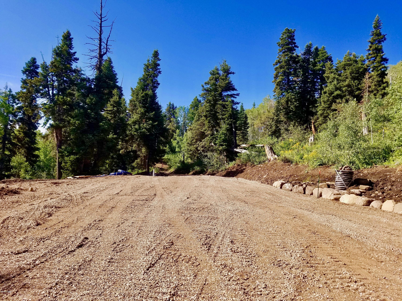 1934  Pine Meadow Drive
