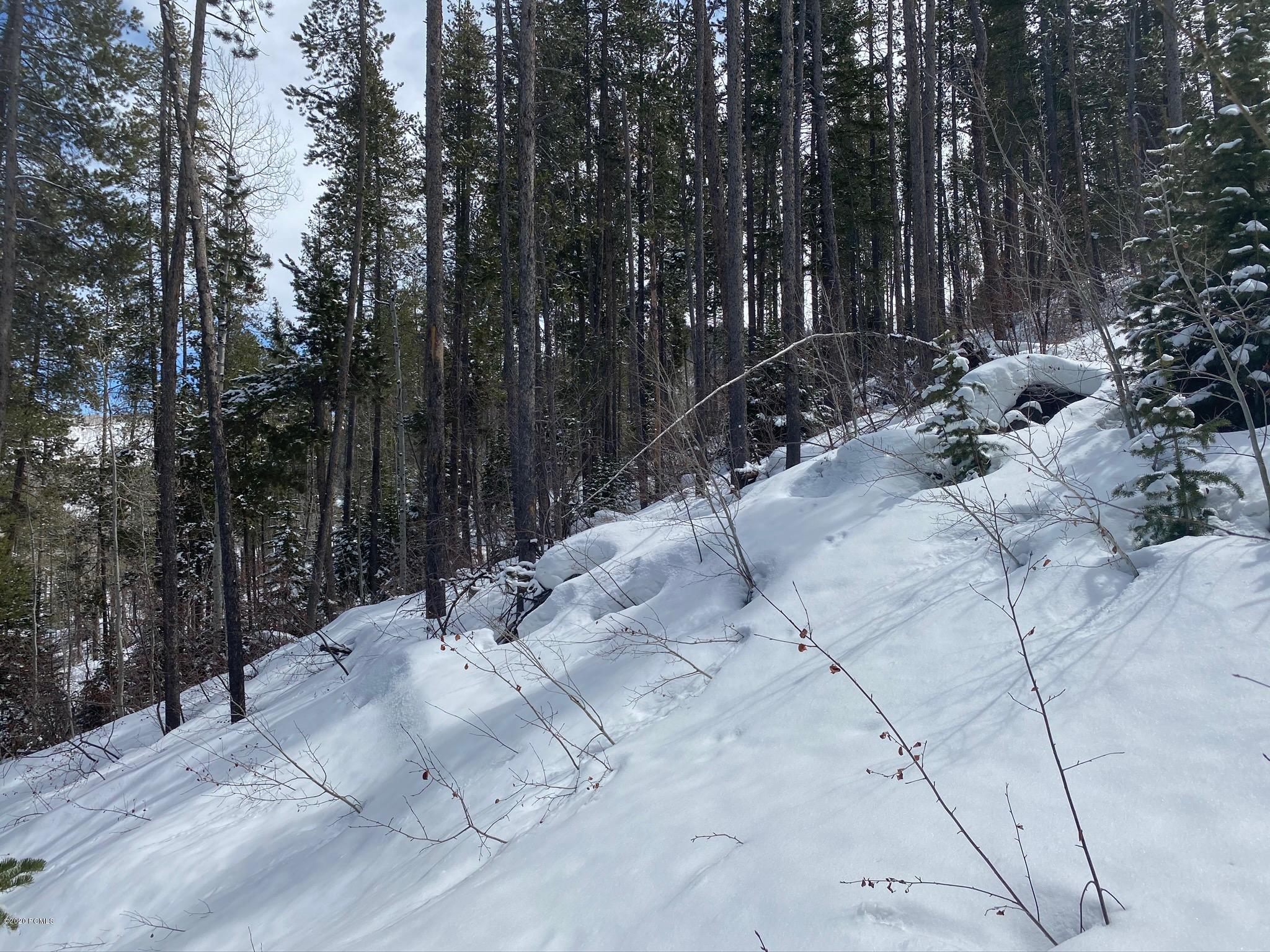 6436  Rock Slide Circle