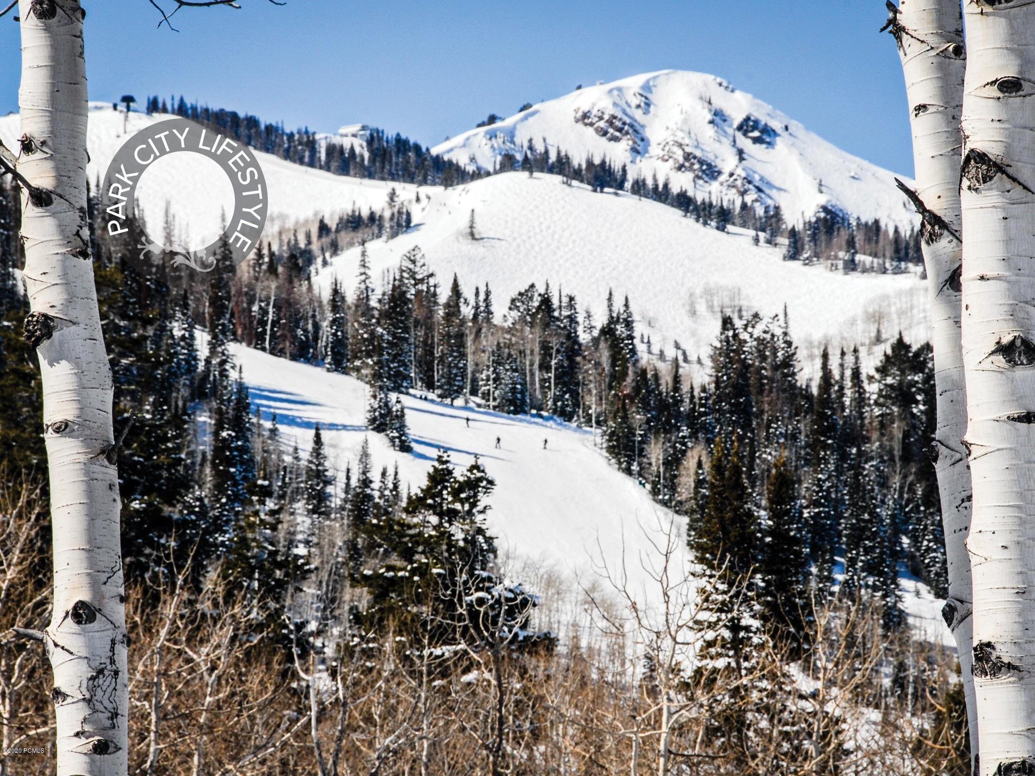 7350 N Bugle Trail