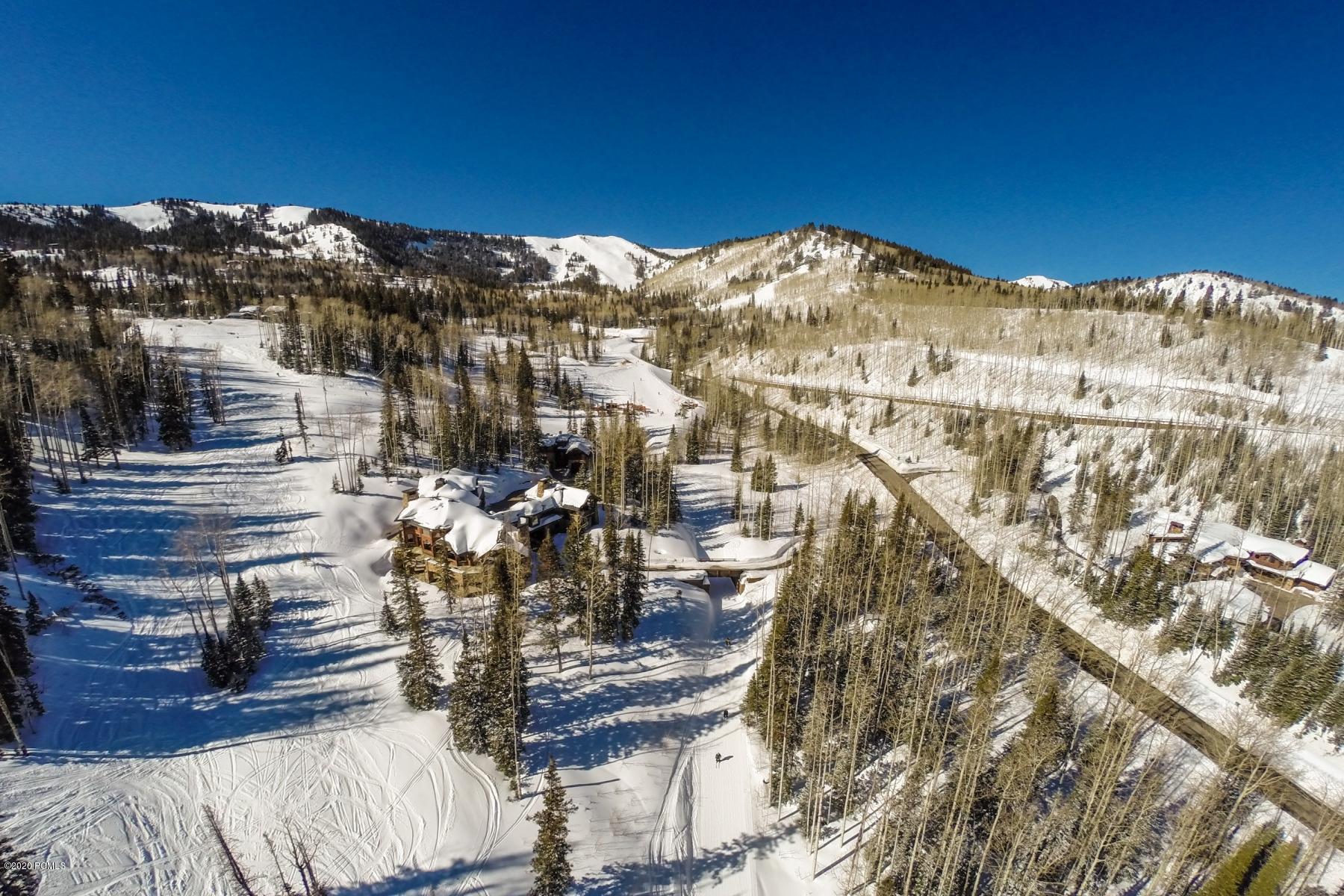 91  White Pine Canyon
