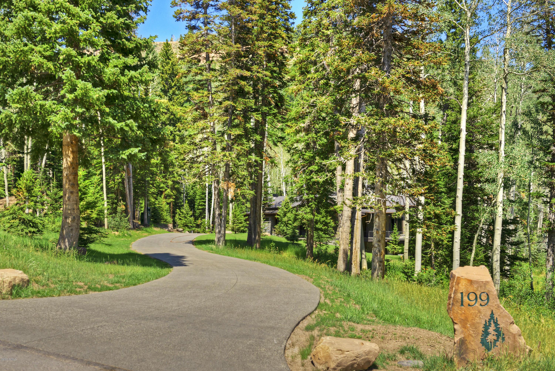 199  White Pine Canyon Road