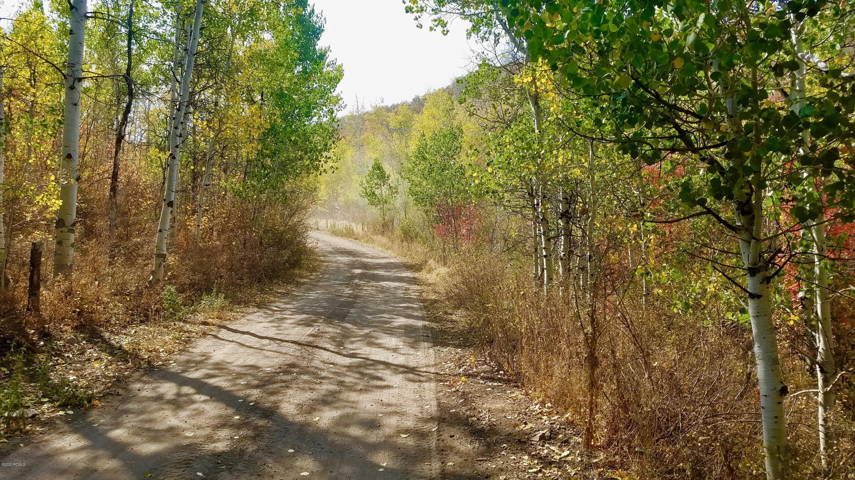 1872  Woodland Crest Road
