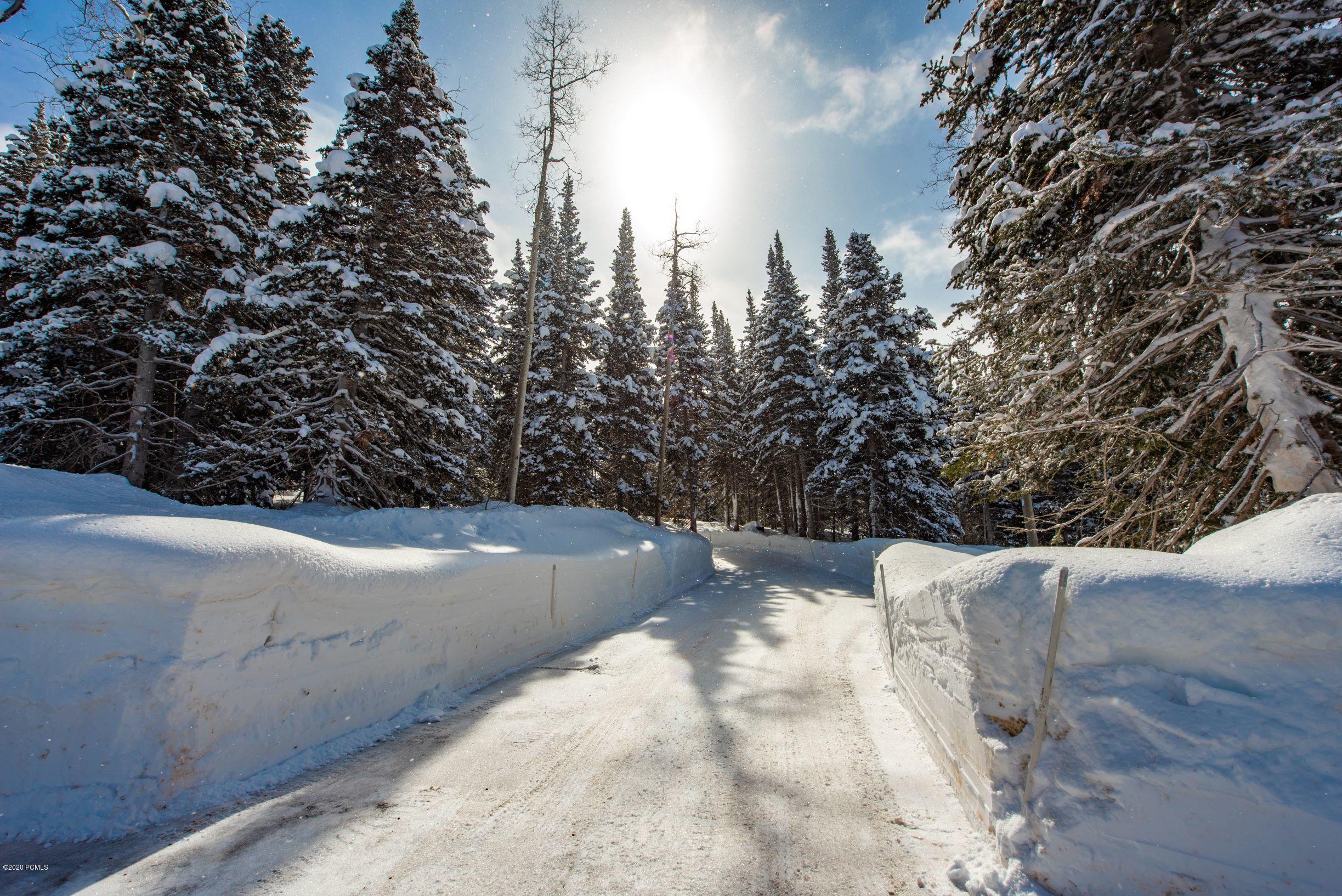 208  White Pine Canyon