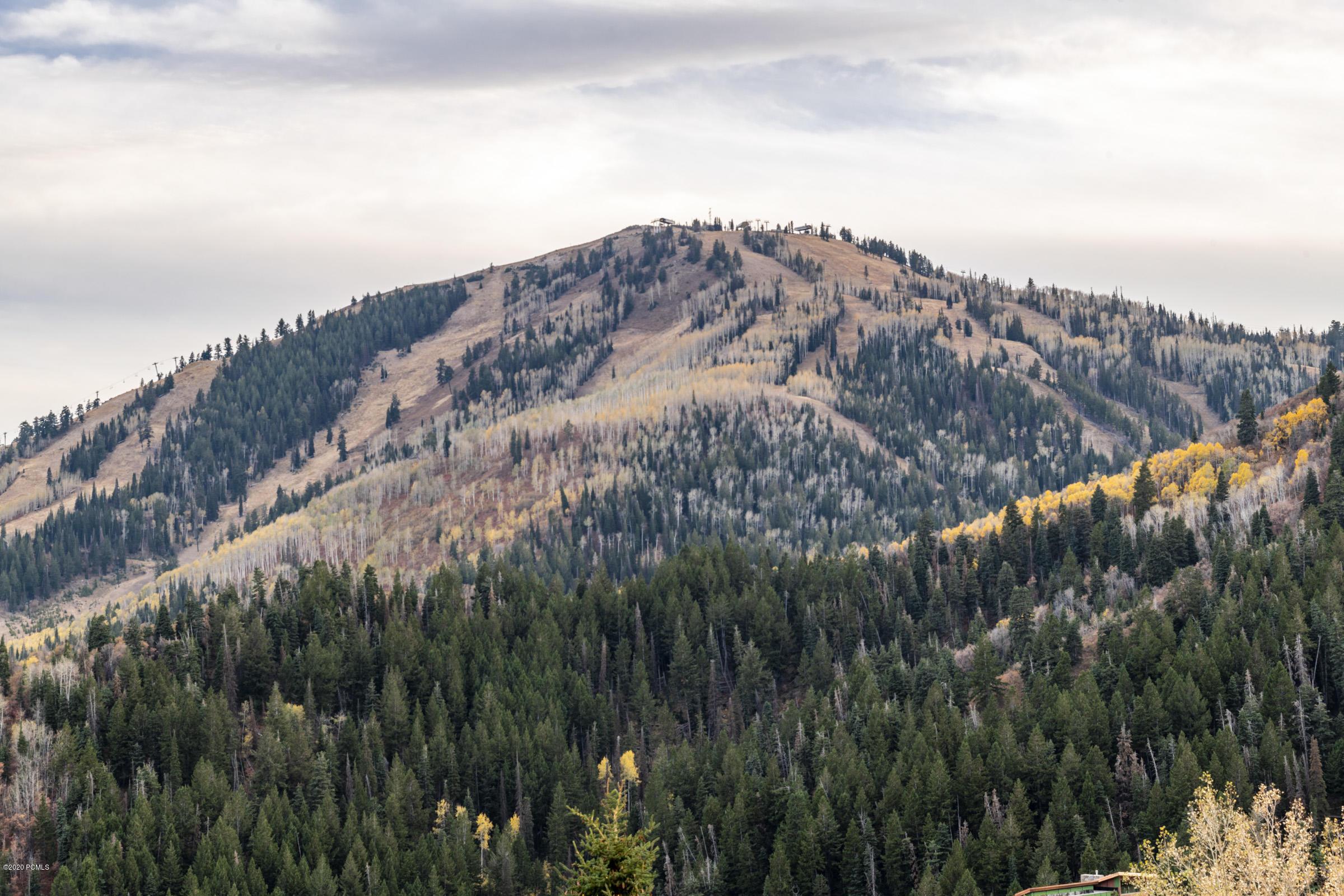 9968  Summit View Drive