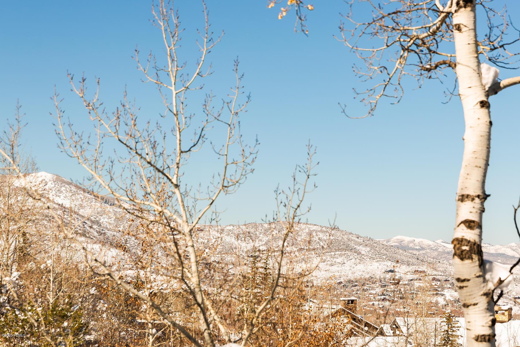 2432  Iron Mountain Drive