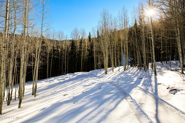 308  White Pine Canyon Road