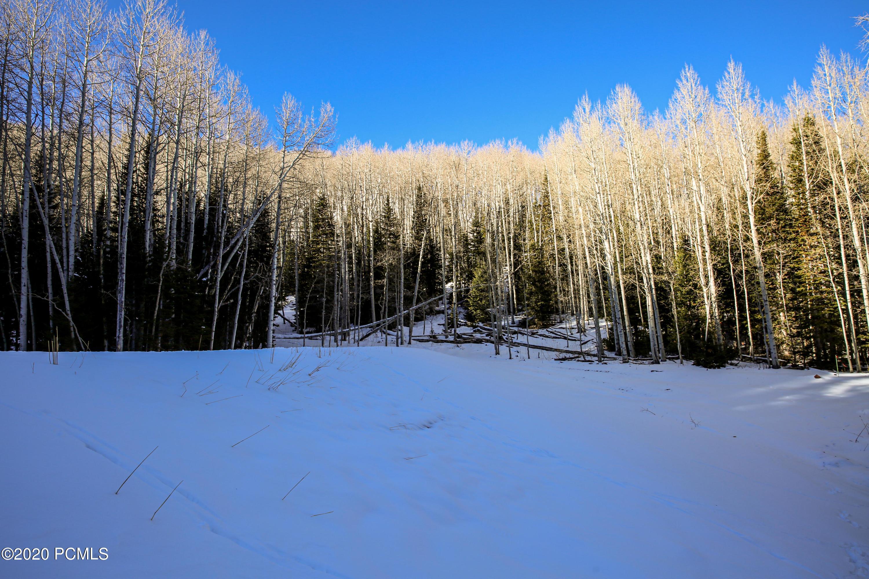 309  White Pine Canyon Road