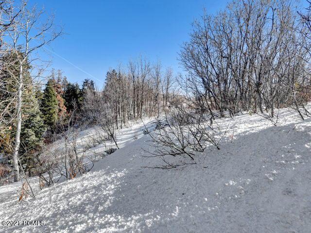 4128  Moose Hollow Road