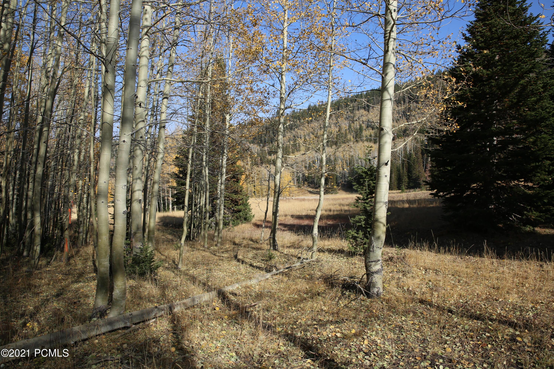 323  White Pine Canyon Road