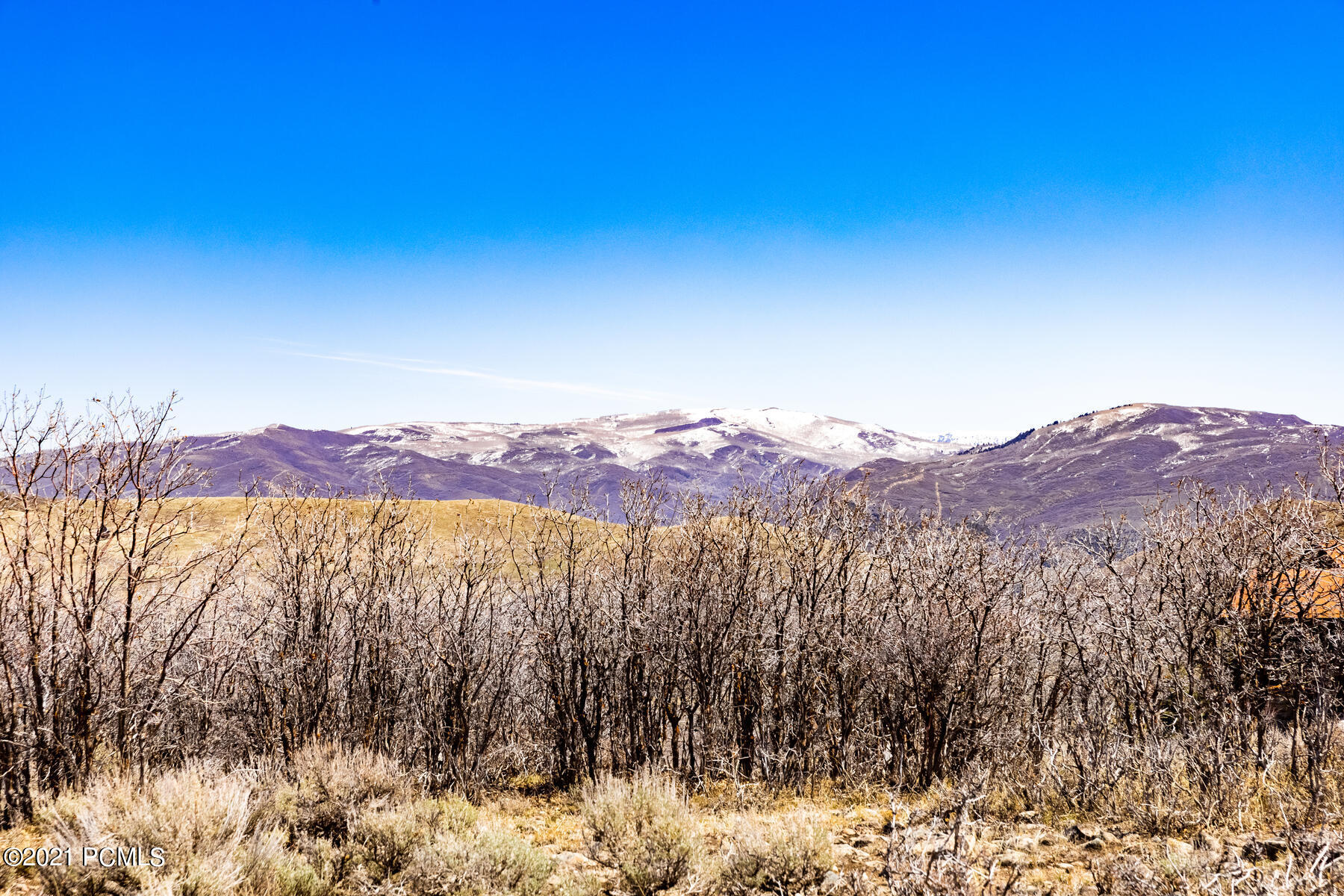 4085  Aspen Camp Loop