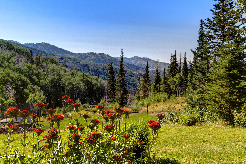 182  White Pine Canyon Road