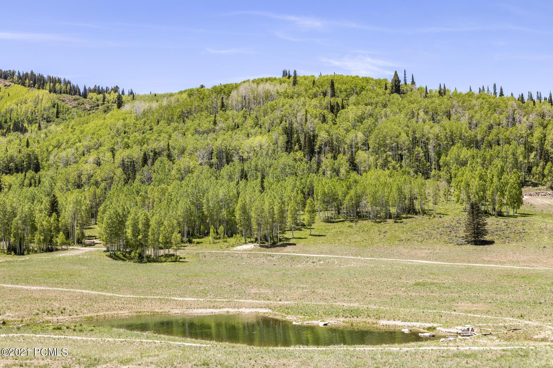 264  White Pine Canyon Road