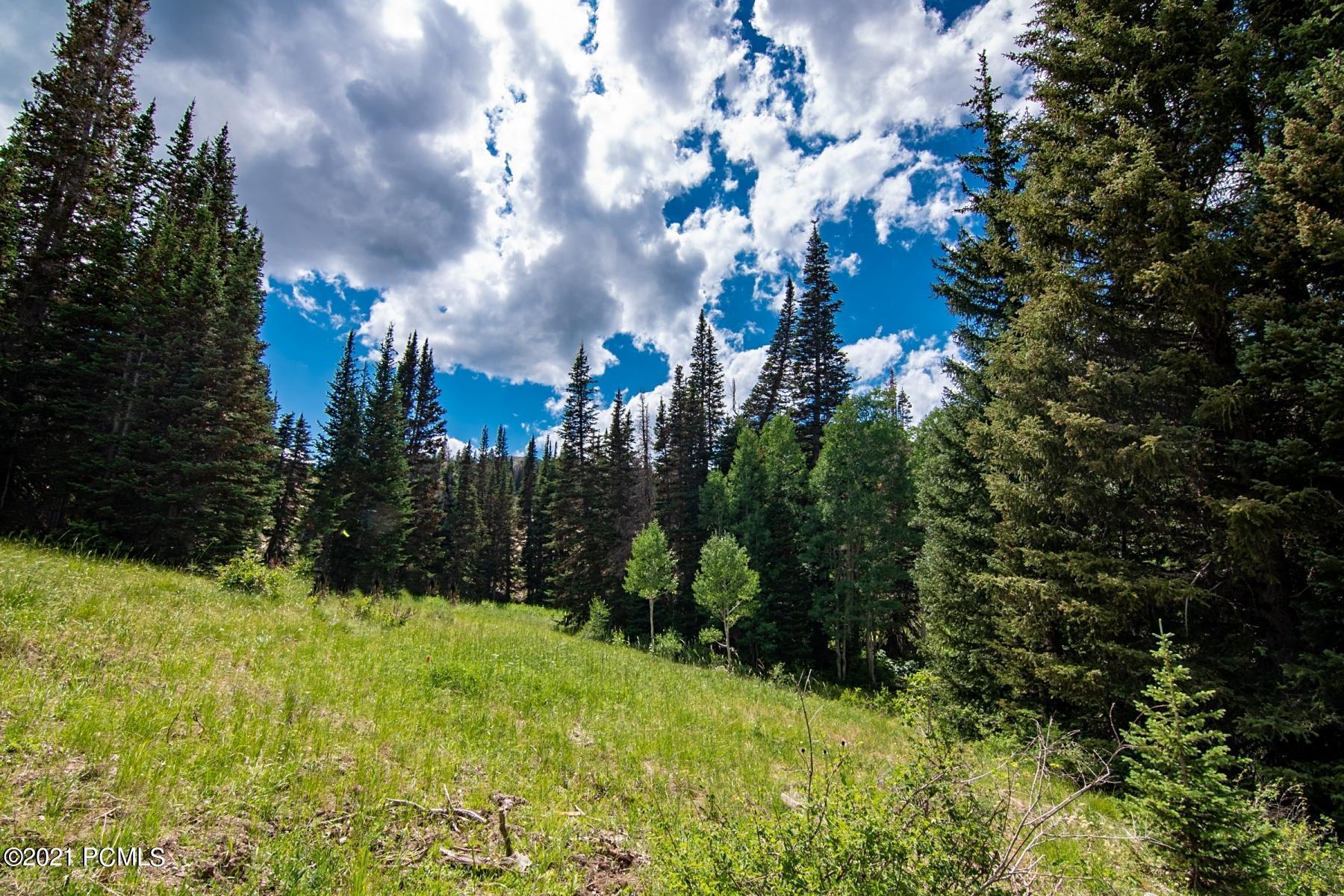 329  White Pine Canyon Road