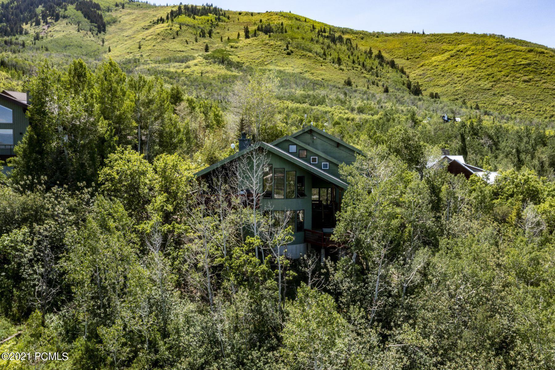 2460  Iron Mountain Drive
