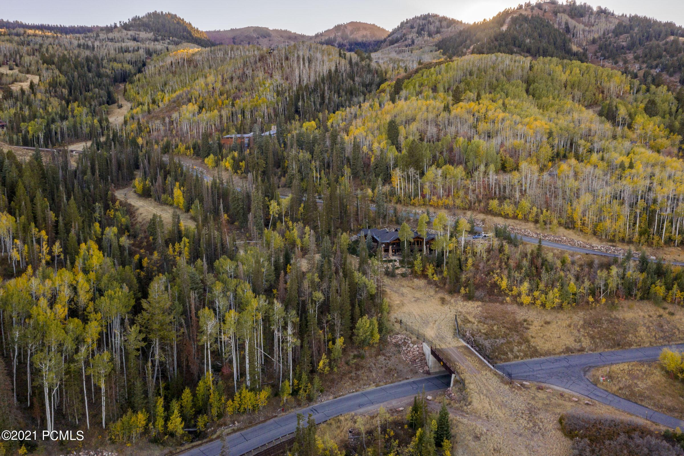 23  White Pine Canyon Road