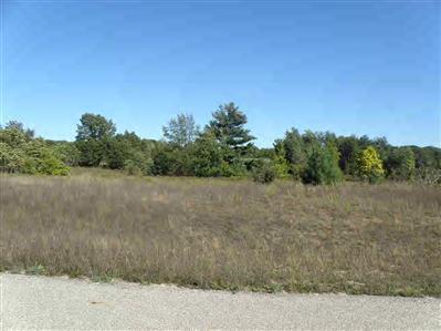 11 Trim Lake View Estates, New Era, Michigan 49446, ,Land,For Sale,Trim Lake View Estates,10007932