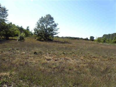 17 Trim Lake View Estates, New Era, Michigan 49446, ,Land,For Sale,Trim Lake View Estates,10007955