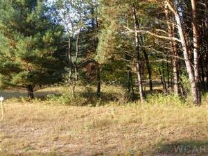 Property for sale at 6500 Kilkenny Drive Unit 3, Canadian Lakes,  MI 49346