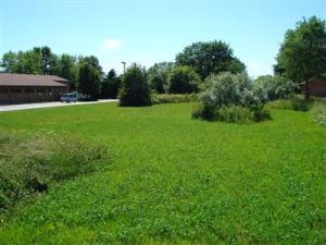 5870 Cleveland Avenue, Stevensville, Michigan 49127, ,Land,For Sale,Cleveland,2929837