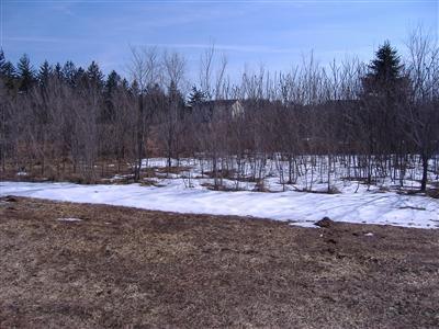4568 Lake Pines Lane, Berrien Springs, Michigan 49103, ,Land,For Sale,Lake Pines,11003288