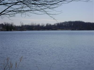 14388 Horn Drive, Camden, Michigan 49232, ,Land,For Sale,Horn,11015748