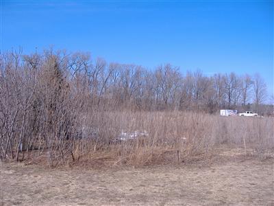4567 Lake Pines, Berrien Springs, Michigan 49103, ,Land,For Sale,Lake Pines,11008249