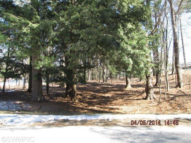 362 Clymer, Pentwater, Michigan 49449, ,Land,For Sale,Clymer,14025906