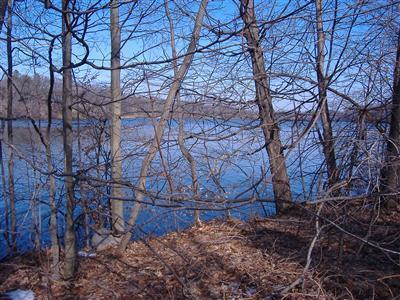 4517 Lake Chapin Berrien Springs, MI 49103 Photo 6