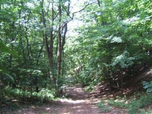 Property for sale at 4c 142nd Avenue, Holland,  MI 49423