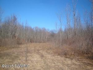 00 Wiley Road, Saugatuck, Michigan 49453, ,Land,For Sale,Wiley,15009899