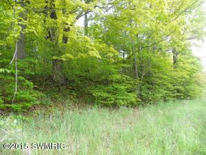 Lot 11-12 South Street, Vandalia, Michigan 49095, ,Land,For Sale,South Street,15024488